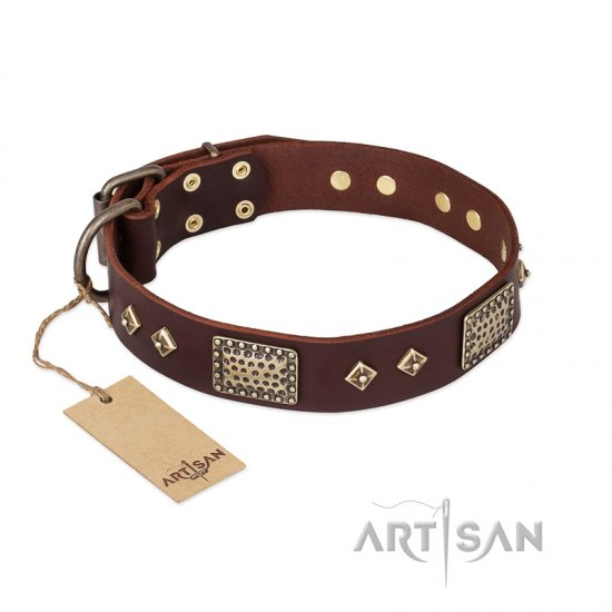 """Loving Owner"" FDT Artisan Decorated Leather dog Collar with Plates and Studs"