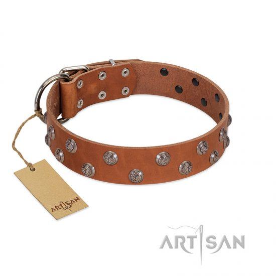 """Waltz of the Flowers"" Handmade FDT Artisan Tan Leather dog Collar with Chrome-plated Engraved Studs"