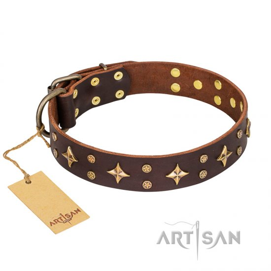 'High Fashion' FDT Artisan Perfect Brown Leather Dog Collar