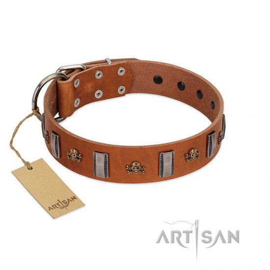 """Golden Crossbones"" Handmade FDT Artisan Tan Leather dog Collar with Plates and Skulls"