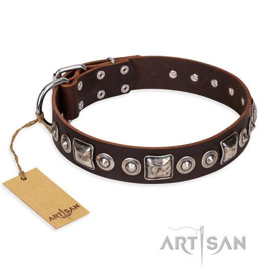 """Pierian spring"" FDT Artisan Brown Leather dog Collar with Silvery Decorations"