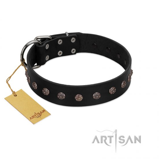 """Flower Rhapsody"" FDT Artisan Premium Quaulity Black Leather dog Collar"