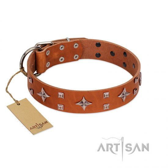 """Tawny Beauty"" FDT Artisan Tan Leather dog Collar Adorned with Stars and Tiny Squares"