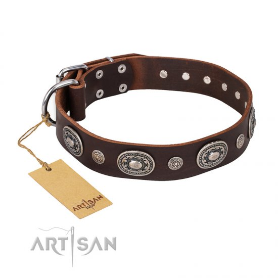 """Extra Pizzazz"" FDT Artisan Adorned Brown Leather dog Collar"
