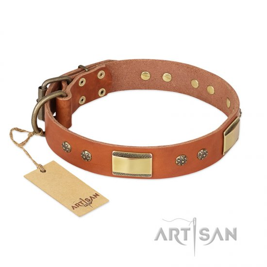 """Enchanting Spectacle"" FDT Artisan Tan Leather dog Collar with Old Bronze Look Plates and Round Studs"