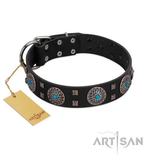 """Boundless Blue"" FDT Artisan Black Leather dog Collar with Chrome Plated Brooches and Square Studs"