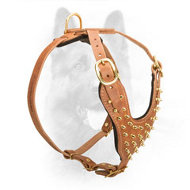 Brass Spiked Leather Dog Harness