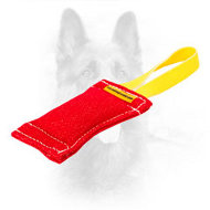 Bright and Stylish French Linen Canine Bite Tug