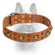 'Space-Like' Leather Dog Collar with Brass Decorations