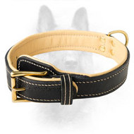 Handmade Custom Leather K9 Collar With Soft Nappa Padding