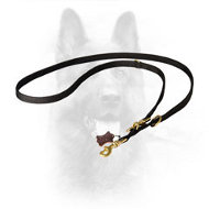 Strong K9 Nylon Leash for Various Purposes
