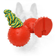 Bright Rubber Dog Training Ball