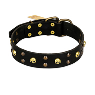 FDT Artisan 'Heavy Metal' Leather Dog Collar with Skulls and Studs 1 1/2 inch (40 mm)