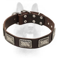 Decorated Leather Canine Collar with Nickel Plates