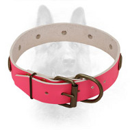 Bright Pink Leather K9 Collar with Vintage Brass Plates
