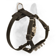 Police Dog Puppy Leather Harness with Nickel Spikes