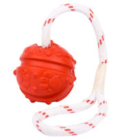 Similar to Everlasting Fun Ball on a Rope for K-9 dogs