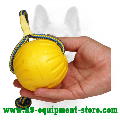 Lightweight Dog Toy Made of Foam with Nylon Rope