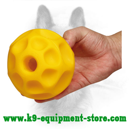 Tetraflex Pet Ball Food Dispenser