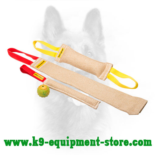 Jute Canine Bite Set with Bonus Rubber Ball