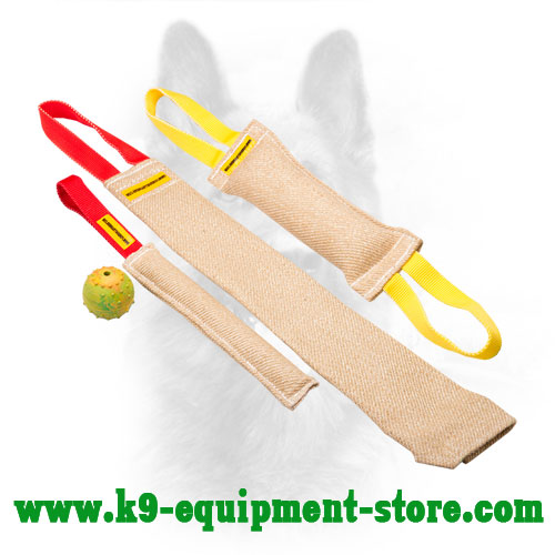 Jute Canine Bite Set for Puppy Training