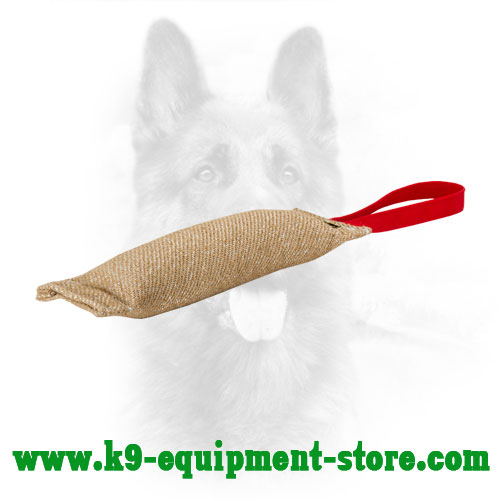 Jute Dog Bite Pad for Puppies and Young Canine
