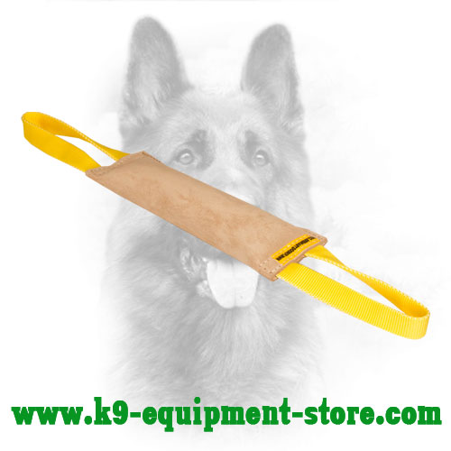Leather Canine Bite Tug for Puppy Training