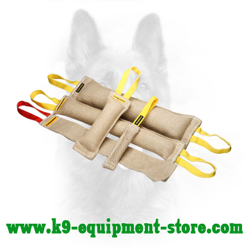 Jute Canine Bite Tug Set for Training