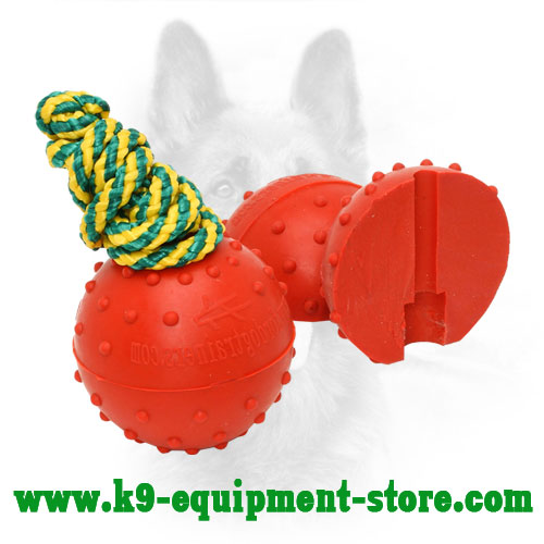 Dotted Rubber Dog Toy Ball for Training