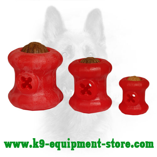 Dog Treat Toy Made of Durable Foam Three Sizes