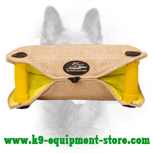 Canine Jute Bite Builder with Easy Grip Angle