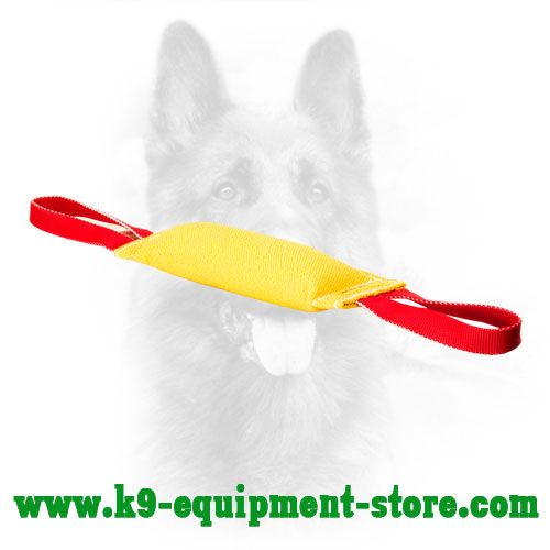 French Linen Bite Tug for Effective Puppy Training