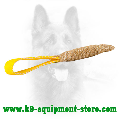 Puppy Jute Bite Tug Equipped with Comfortable Loop