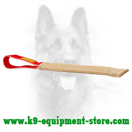 Jute Canine Bite Tug for Primary Puppy Training
