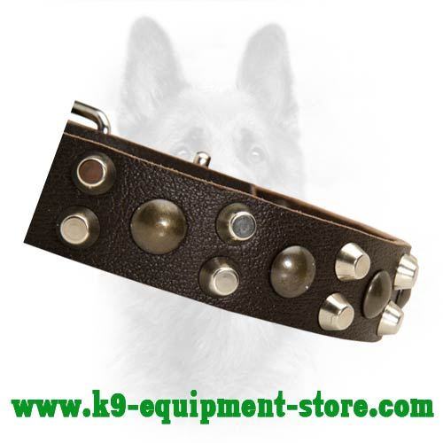 Brass Cones And Nickel Studs Riveted to K9 Dog Collar