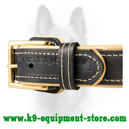 Brass Hardware Stitched to K9 Leather Collar