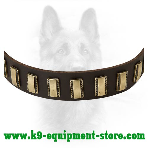 Brass Plates for K9 Collar Decoration