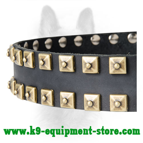 Brass Square Doted Studs Riveted to Canine Leather Collar
