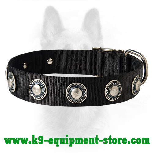 Nylon Collar for Canine with Nickel Conchos