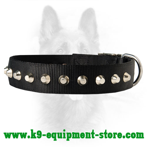 Nylon Collar for Canine with Riveted Cones