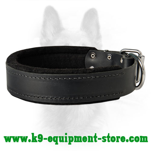 K9 Dog Collar Serves For Different Types Of Training