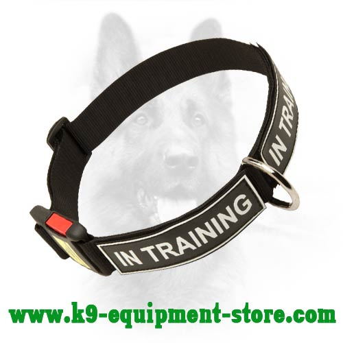 Easily Adjustable Dog Collar With Quick Release Buckle