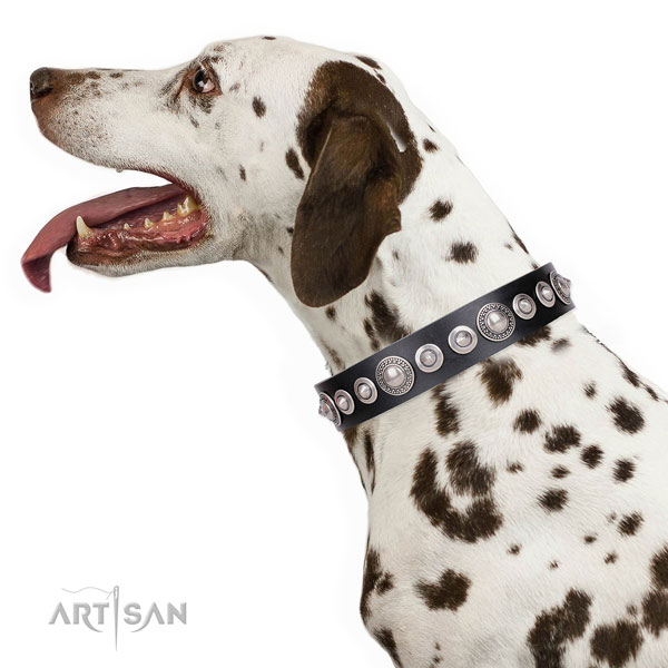 Designer decorated genuine leather dog collar for comfy wearing
