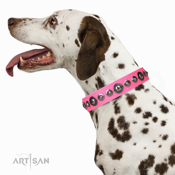 Incredible decorated genuine leather dog collar for stylish walking