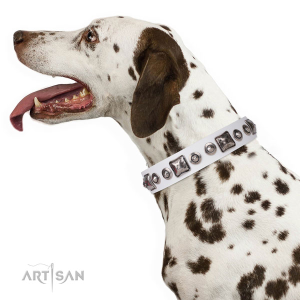 Stylish design adorned genuine leather dog collar for handy use