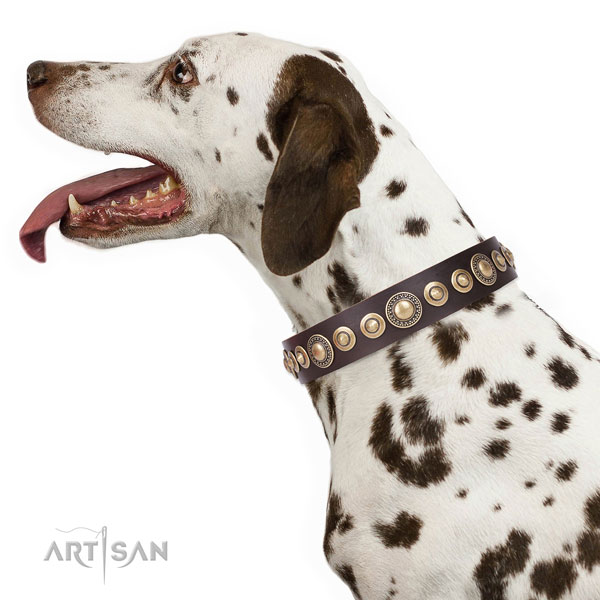 Trendy adorned natural leather dog collar