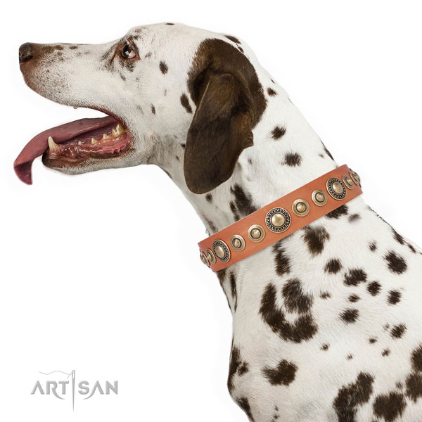 Strong buckle and D-ring on full grain leather dog collar for walking in style