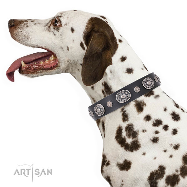 Reliable buckle and D-ring on natural leather dog collar for walking in style