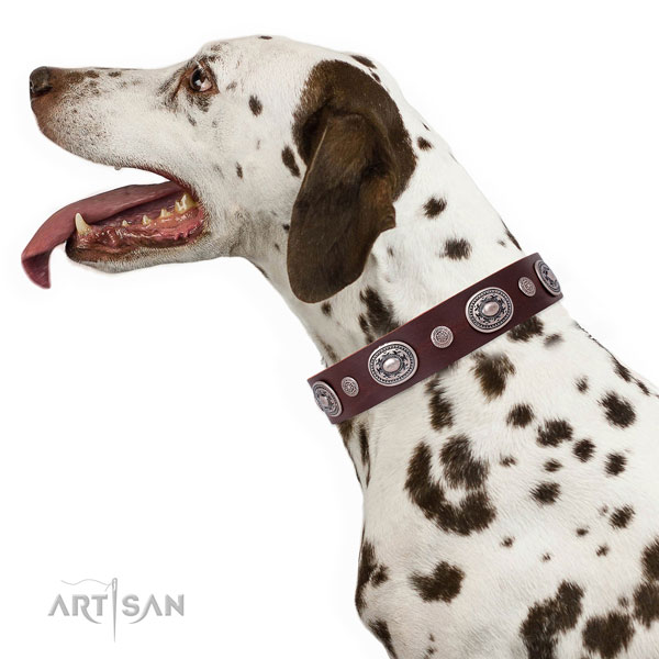 Rust-proof buckle and D-ring on natural leather dog collar for walking