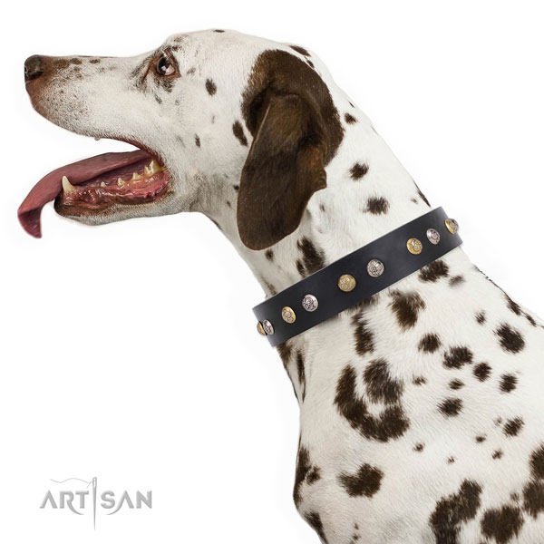 Leather dog collar with rust resistant buckle and D-ring for walking